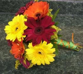 Gerbera Daisies 15 from local Myrtle Beach florist, Bright & Beautiful Flowers