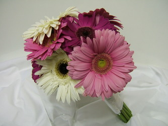 Gerbera Daisies 17 from local Myrtle Beach florist, Bright & Beautiful Flowers