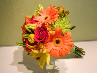 Gerbera Daisies 19 from local Myrtle Beach florist, Bright & Beautiful Flowers