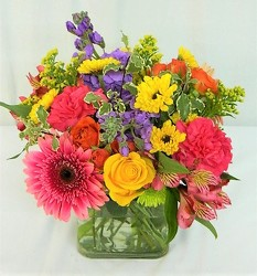 Color My World from local Myrtle Beach florist, Bright & Beautiful Flowers