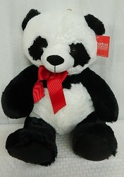 Perfect Panda from local Myrtle Beach florist, Bright & Beautiful Flowers